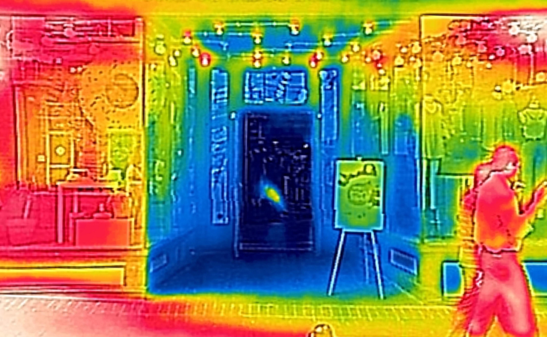 Thermal image (cropped).jpg